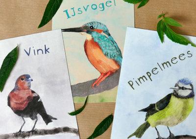 A6 kaarten vogels