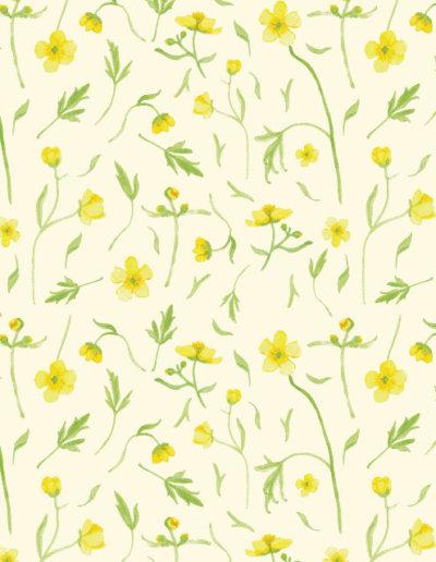 patroon boterbloemen