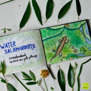 nature journal Watersalamander spread