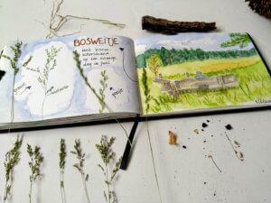 nature journal Bosweitje spread