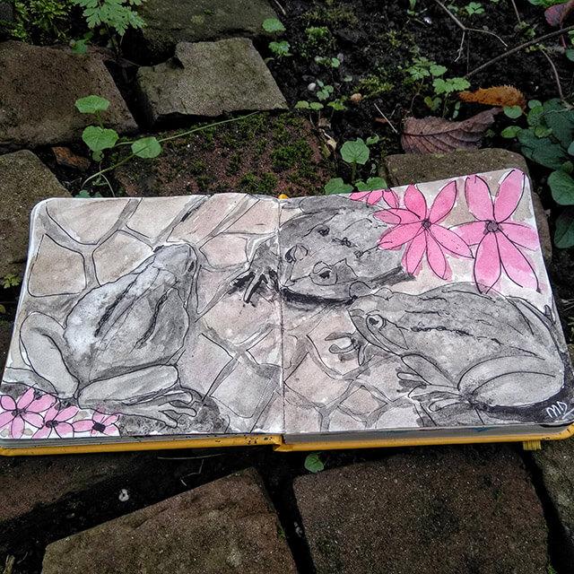 Padden op tuinpad