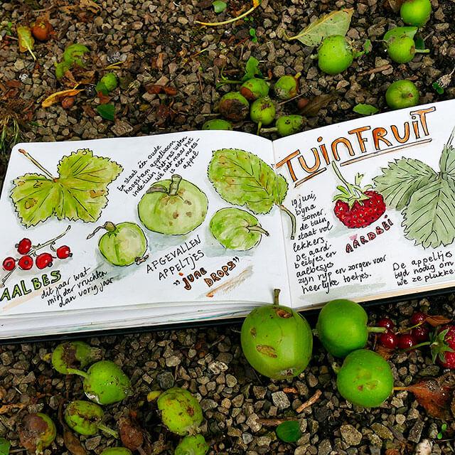 Tuinfruit