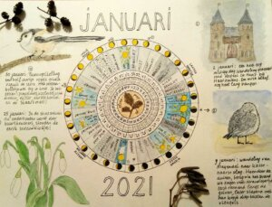 fenologiewiel januari 2021