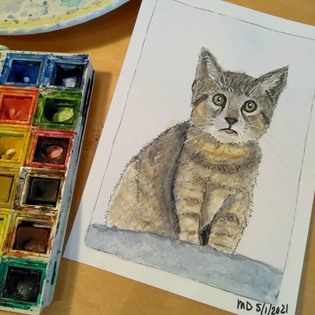 Kitten aquarel